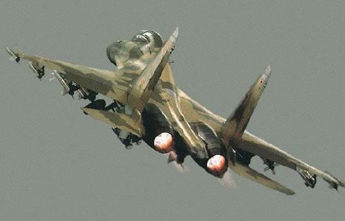 Названа причина падения самолета Су-30 в Хабаровском крае