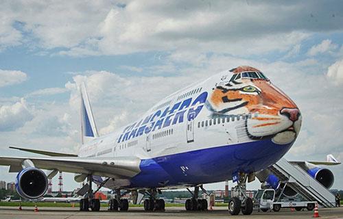 """Boeing-747 авиакомпании """"Трансаэро"""" в тигриной окраске"""